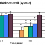 Thickness wall (systole)