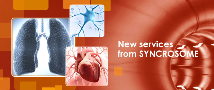 new lung 2 - New services from SYNCROSOME
